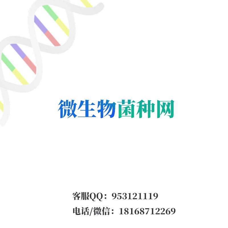 具核梭杆菌聚核亚种ATCC25586 Fusobacterium nucleatum subsp nucleatum